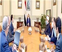 الرئيس السيسي يستعرض الموقف التنفيذي لمشروعات تنمية سيناء