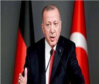 شاهد.. انتقادات واسعة لأردوغان بعد بناء سجن بـ90 مليون ليرة