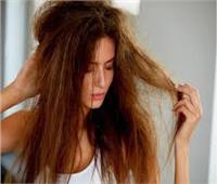 العسل والبيض وخل التفاح.. حلول فعالة لإنهاء مشكلة الشعر الجاف