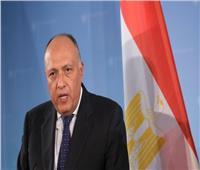 وزيرا خارجية مصر والنمسا يبحثان تعزيز العلاقات الثنائية