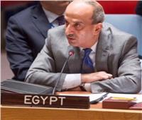 عبد الخالق: رئاسة مجلس السلم الإفريقي محطة جديدة للريادة المصرية
