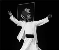 الإخوة أبو شعر ينشدون في ساقية الصاوي 16 أكتوبر المقبل