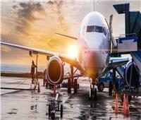 الإياتا: كورونا دمرت صناعة الطيران