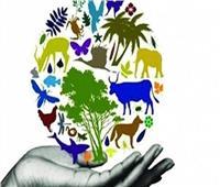 8 أسباب وراء تدهور التنوع البيولوجي