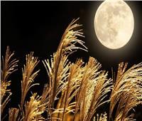 الخميس.. القمر المكتمل ينشر طاقة غضب