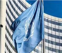 الأمم المتحدة تشيد بالمشروعات المُنفَذَة بين مصر ومنظمة الفاو