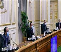 الحكومة: 487 مشروعا بـ17.5 مليار جنيه تنفذها الوزارات المختلفة بمحافظة أسوان