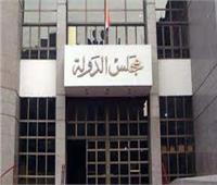 دورة تدريبية لقضاة مجلس الدولة بالتعاون مع الوطنية للانتخابات