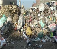 فيديو   تلال القمامة تغطي شوارع شبرا الخيمة