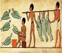 حكايات| «فياجرا» الفراعنة.. فسفور المصريين يقبع في نهر النيل