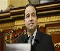 برلماني: محاولات الجزيرة والإرهابية لتشويه انتصار أكتوبر «خسيسة»