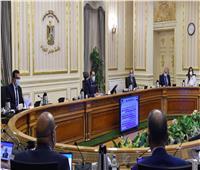 إنفوجراف| الحصاد الأسبوعي لمجلس الوزراء..أبرزها«طرح وحدات جديدة»
