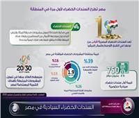 انفوجراف| لأول مرة.. مصر تطرح السندات الخضراء السيادية
