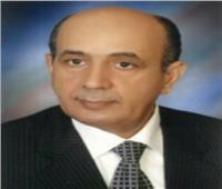 وصول «رئيس مجلس الدولة» لحضور ندوة الإشراف على انتخابات النواب