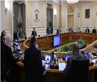 قرار هام من الوزراء بشأن دمج «الخزانة العامة وسك العملة»