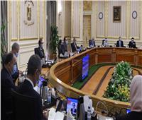 الحكومة: تأسيس الشركة الوطنية لصناعات السكك الحديدية بالمنطقة الاقتصادية لقناة السويس
