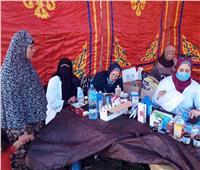 قوافل «طبية وبيطرية» احتفالا بالعيد القومي فى «الغربية»