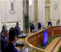 مدبولي: توجيهات رئاسية بتوفير معمل مركزي بكل ميناء للتيسير وسرعة الإفراج الجمركي
