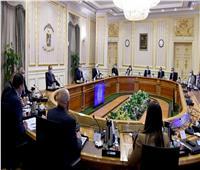 إنفوجراف| الحصاد الأسبوعي لمجلس الوزراء.. أبرزها«طرح وحدات جديدة»