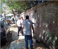 صور | إزالة لافتات الدعاية الانتخابية المخالفة بحي بولاق