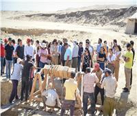 """""""الهجرة"""" تنظم زيارة إلى منطقة سقارة الأثرية لوفد شباب الدارسين بالخارج"""