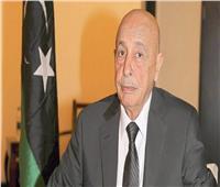 أعضاء بالنواب الليبي يلتقون لمحادثات المسار الدستوري بالقاهرة