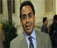 هاني سرى الدين: «الوفد» داعم لخطوات الإصلاح الاقتصادي