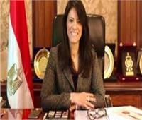 «المشاط» تستعرض التقارير الدولية الإيجابية لنمو الاقتصاد المصري رغم كورونا