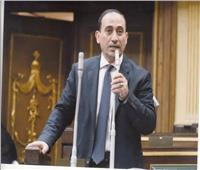 برلماني: دور وزيرة الهجرة في الاستحقاقات البرلمانية وطني وناجح