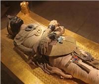 إنفوجراف | موكب المومياوات المهيب.. 22 ملكا وملكة من التحرير للمتحف الكبير