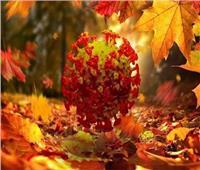 4 نصائح بسيطة لتجنب الإصابة بكورونا في الخريف