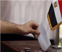 فيديو| اتحاد المصريين بالخارج يكشف آخر موعد لاستقبال خطابات التصويت