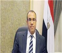 جولة مشاورات سياسية بين مصر أيرلندا لتعزيز العلاقات الثنائية