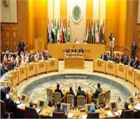رئيس بعثة الجامعة العربية: خطة لمتابعة انتخابات مجلس النواب بعدد من المحافظات