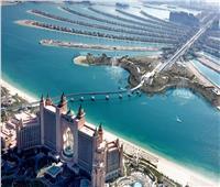 فيديو|«الأكبر في العالم»..نافورة النخلة في دبي تدخل جينيس