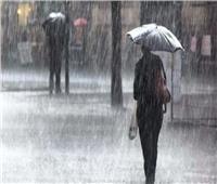 فيديو| الأرصاد تكشف موعد سقوط الأمطار على القاهرة