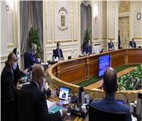 إنفوجراف|« تحذيرات من موجة كورونا».. ننشر الحصاد الأسبوعي لمجلس الوزراء