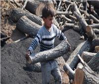 7 ملايين طفل في حرمان مادي بتركيا.. وضحايا عمالة الأطفال «مليونان»