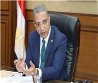 فيديو| انتخابات النواب 2020| محافظ الفيوم: ماسح حراري أمام كل لجنة