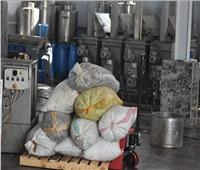 «بحوث الصحراء» تخفيض أسعار عصر الزيتون بمطروح دعماً للمزارعين