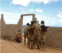 رغم المصالحة الليبية.. تركيا تتحدى العالم وتعلن استمرار تدريب «قوات الوفاق»