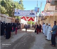 إقبال متزايد على التصويت في دوائر الإسكندرية