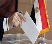 انتخابات النواب 2020| تعرف على سير الاقتراع في ثاني أيامه