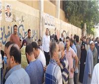انتخابات النواب 2020| زحام شديد أمام لجان قرية «أم خنان» في الحوامدية..فيديو و صور