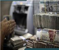 فيديوجراف| أرقام وفئات النقود المطبوعة في السوق المحلية