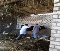 بالصور ..الزراعة: مسح 61 ألف منزل فى 3433 قرية لرصد واكتشاف الأمراض الوبائية