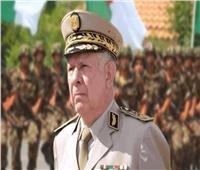 الجزائر: إنجاح استفتاء التعديلات الدستورية يتطلب تحكيم العقل