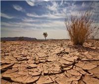 الأمم المتحدة: التغير المناخي يشكل تهديدًا متزايًدا لأفريقيا