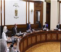 رئيس الوزراء يناقش مشروع قانون إنشاء مجلس طبي جديد