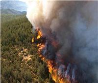 أوامر بإجلاء 60 ألفا في جنوب كاليفورنيا بسبب حريق غابات
